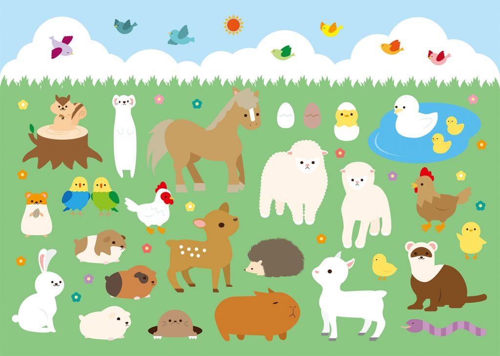 動物占い 生年月日